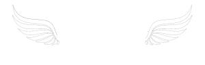 ACE logo, wing2WHITE-300x96