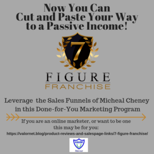 7 Figure Franchise by Michael Cheney