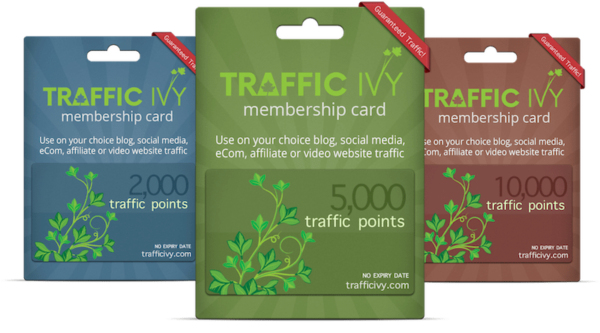 Traffic Ivy Bundle