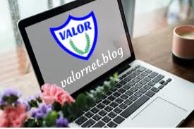 valornet logo flower computer
