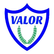 valornet shield