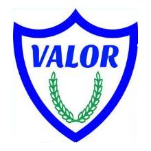 valornet shield